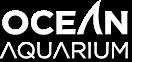 Ocean Aquarium | Big Aquarium | Tunnel Aquarium | Sea Aquarium