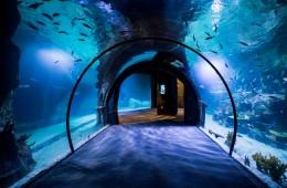 Funtastic Aquarium İzmir