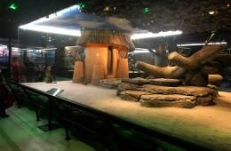 Nata Vega Zoo