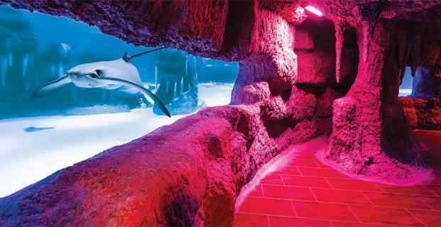 Funtastic Aquarium Tashkent